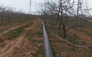 黄龙县小型农田水利重点县项目