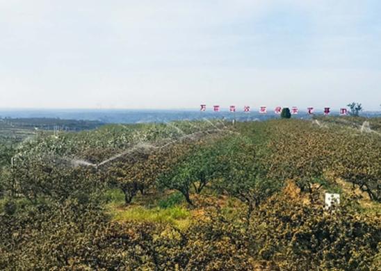 5000亩高标准花椒示范基地改造提升工程